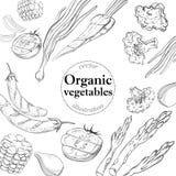 Gezonde en verse groenten Organisch malplaatje als achtergrond Stock Foto