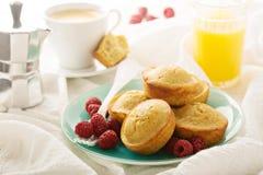 Gezonde gluten vrije quinoa muffins stock foto's