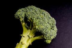Gezonde Groene Organische Broccoli stock afbeelding