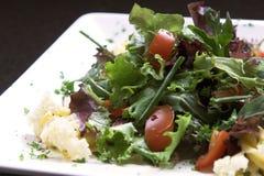 Gezonde groene salade Royalty-vrije Stock Afbeelding