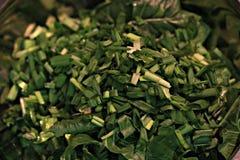 Gezonde groene salade Stock Foto