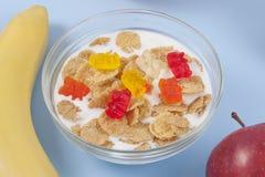 Gezonde het eten ontbijtkom van lage calorieënmuesli met vruchten Stock Foto