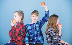 Gezonde het op dieet zijn en vitaminevoeding Jongen en meisjes de vrienden eten appelsnack terwijl het ontspannen Het concept van stock foto