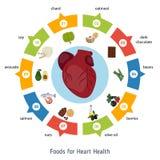 Gezonde infographics van het hartvoedsel Stock Fotografie
