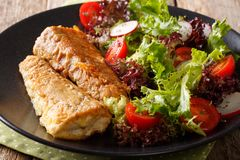 Gezonde lunch: gebraden stokvissen met tomaat, radijs en slasalade stock afbeeldingen