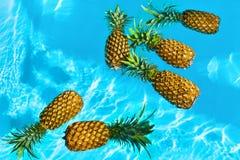 Gezonde natuurvoeding Verse Ananassen in Water fruit Nutritio stock fotografie