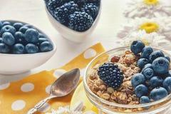 Gezonde Ontbijtgraangewassen: muesli met fruit, noten en bessenbosbessen, braambessen Selectieve nadruk Stock Fotografie