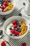 Gezonde Organische Griekse Yoghurt met Granola en Bessen Stock Fotografie