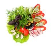 Gezonde plantaardige salade Royalty-vrije Stock Fotografie