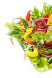 Gezonde plantaardige salade royalty-vrije stock foto