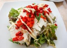 Gezonde salade Royalty-vrije Stock Fotografie