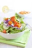Gezonde Salade met tomaat, ui, komkommer en sla royalty-vrije stock fotografie