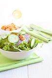 Gezonde Salade met tomaat, ui, komkommer en sla royalty-vrije stock afbeeldingen