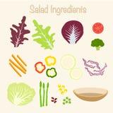 Gezonde Saladeingrediënten Stock Fotografie