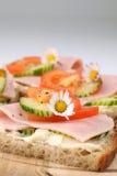 Gezonde sandwiches stock afbeelding
