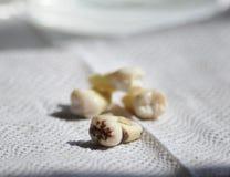 Gezonde tanden en holtetand op witte tandartsachtergrond Royalty-vrije Stock Afbeeldingen