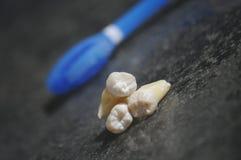 Gezonde tanden op grijze achtergrond Stock Afbeeldingen