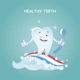 Gezonde tanden Vector illustratie Illustratie voor kinderentandheelkunde en orthodontie Beeldtandenborstel, aan stock illustratie