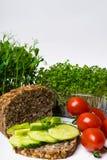 gezonde veganistburgers met avocado, groene spruiten, tomaten, exemplaarruimte Het vegetarische, schone eten, alkalisch dieetvoed stock fotografie