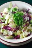 Gezonde vegetarische salade Royalty-vrije Stock Afbeelding