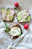 Gezonde vegetarische sandwiches met radijs en komkommerplak stock foto