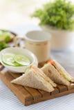 Gezonde veggie sandwich Royalty-vrije Stock Afbeeldingen