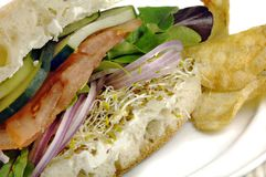 Gezonde Veggie Sandwich Royalty-vrije Stock Foto