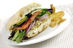 Gezonde Veggie Sandwich Stock Foto's