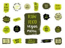 Gezonde voedseletiketten Hand getrokken embleemmalplaatjes Vector Stock Afbeelding
