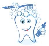 Gezonde witte glanzende tand Stock Afbeeldingen