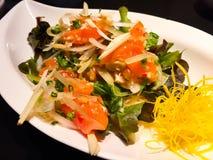 Gezonde Zalmsalade met kruiden en kruidige citroenvulling Dit is een voorgerecht met verse salades stock fotografie