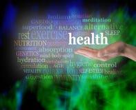 Gezondheid in de palm van uw hand Royalty-vrije Stock Afbeeldingen