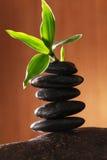 Gezondheid en wellness Royalty-vrije Stock Afbeeldingen