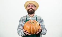 Gezondheid in zijn handen Oogstfestival Nuttige groenten rijk de herfstgewas seizoengebonden vitamine Zonnebloemzaden - zaadfonds royalty-vrije stock foto