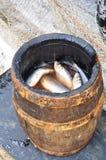 Gezouten haringen in een vat royalty-vrije stock afbeelding