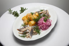Gezouten haringenplak met gekookte aardappel Stock Fotografie
