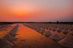 gezouten landbouwbedrijf Stock Afbeeldingen