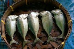 5 gezouten makreel in mand in een markt Stock Afbeeldingen