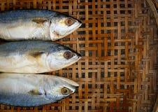 Gezouten makreel op bamboe rieten achtergrond Stock Foto's