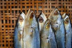 Gezouten makreel op bamboe rieten achtergrond Royalty-vrije Stock Foto's