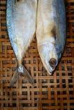 Gezouten makreel op bamboe rieten achtergrond Stock Fotografie