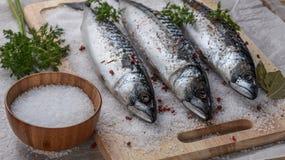 Gezouten makreel op een knipselraad met kruiden stock afbeelding