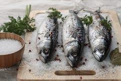 Gezouten makreel op een knipselraad met kruiden stock afbeeldingen