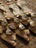 Gezouten vissen Royalty-vrije Stock Foto's