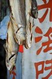 Gezouten Vissen die in Hongkong hangen royalty-vrije stock foto
