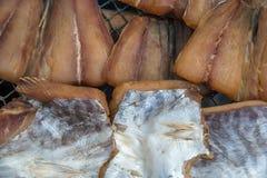 Gezouten vissen (droge vissen) in markt Stock Foto
