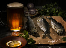 Gezouten vissen en een biermok in een traditionele rustieke visserijstijl Royalty-vrije Stock Foto's