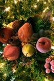 Gezuckerte Früchte im Baum Stockfoto