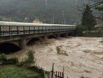 Gezwelde rivier en brug Stock Fotografie