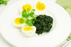 Ägg med spenat Fotografering för Bildbyråer